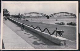 Dortmund - Schlange Am Rheinufer - Dortmund