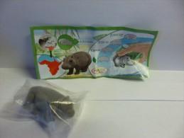 Kinder Surprise  DC 021 Hippo  (foncé Et Tourné Vers La Gauche Sur BPZ) + Bpz - Mountables