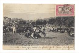 11175 -  Tananarive Relais De Boeufs à Analakely - Madagascar