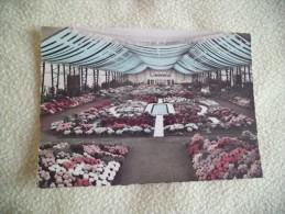 FLORALIES GANTOISES..1955 - Fleurs, Plantes & Arbres