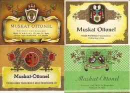 4 ETICHETTE VINO MUSKAT OTTONEL AUSTRIA 4 AUSTRIA WINE LABELS - Collections & Sets