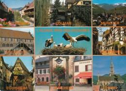 L´Alsace - Au Pays Des Cigognes: Colmar, Munster, Mulhouse, Turcheim, Thann, Eguisheim, Riquewihr, Kayserserg - Alsace