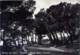 Varazze - Pineta Piani D'invrea - Savona - Formato Grande Viaggiata Mancante Di Affrancatura - Savona