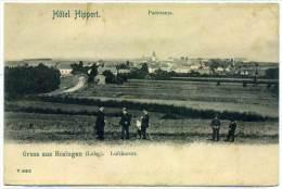 XLXB.1.  HOSINGEN - Hotel Hippert - Cartoline