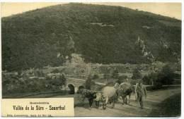 XLXB.7.  Vallée De La Sûre - Sauerthal - Cartoline