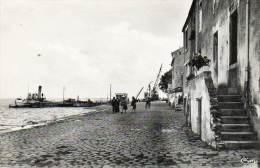 CPSM - PAIMBOEUF (44) - Vapeur à Quai , Aspect En 1950 - Paimboeuf