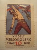 TCHECOSLOVAQUIE . PRAGUE . VSESOKOLSKY SLET V PRAZE 1920 (VII) 1948 (XI) . 2 Vignettes - Tchécoslovaquie