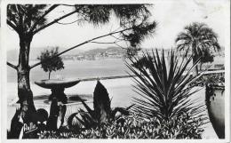"""Cannes - Le Parc Albert Ier - Collection """"la Côte D'Azur"""" - Carte Rella"""