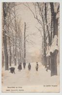 CPA Suisse Neuchâtel En Hiver Le Jardin Anglais  Enfants Voyagée En 1906 . - NE Neuchatel