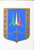 AERONAUTICA MILITARE ITALIANA REPARTI 313 GRUPPO PAN PATTUGLIA ACROBATICA NAZIONALE - Aviation