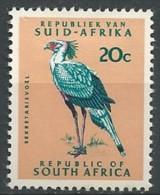 South Africa: Secretarybird (Sagittarius Serpentarius) - 2 - Arends & Roofvogels