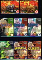 8 Beanie Babies Präge-Karten : Cubbie - Crunch - Germania - Bernie - Smoochy - Nanook - Fetch - Prance - Plüschtiere