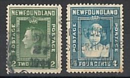 TERRE NEUVE  NEWFOUNDLAND  2 TIMBRES  TB - Newfoundland