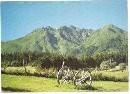 CPM FRANCE 63 PUY-DE-DOME DIVERS - Le Puy De Sancy - Sin Clasificación