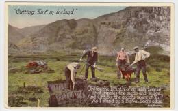 Cutting Turf In Ireland - Irlande