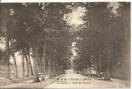 Brive - La Guierle - Allée Des Acacias - Brive La Gaillarde