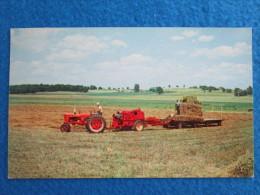 Harvest Of Hay - Grand Island