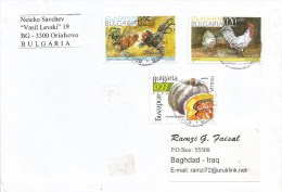 Bulgaria 2003 Oriahovo Melon Fruit Bergich Crower Leghorn Chicken Cock Bird Cover - Gallinacées & Faisans