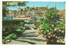 06 - AU SOLEIL DE LA COTE D´AZUR - CANNES - Un Coin Du Port, Vue Sur Le Suquet - éd. YPA N° 332 - Cannes