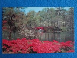 Municipal Gardens, Norfolk, Virginia - Norfolk