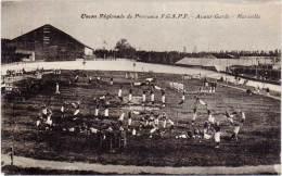 MARSEILLE – Union Régionale De Provence FGSPF – Avant-Garde - Marseille