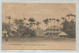 CPA  La Guadeloupe - CAPESTERRE  Habitations Bois Debout - Autres