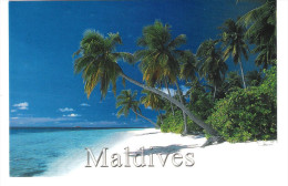 Maldiven - Maldives - Nice Seychelles Stamp - MS Vistamar Print - Maldiven