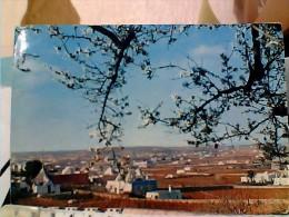 MARTINA FRANCA  VEDUTA  TRULLI VB1967 EQ12508 - Taranto