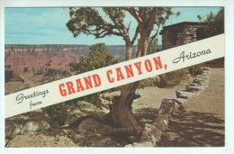 (47) - ARIZ., GRAND CANYON FROM YAVAPAI POINT