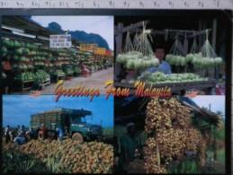 Cart -  Malesia - Greetings From Malaysia - Fruits Of Malaysia - Malesia