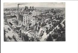 SCHILTIGHEIM-STRASBOURG. -Brauerei Zum Fischer, J.Ehrhard A.-G.(Bière) - Schiltigheim
