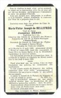 DE BELLEFROID  HERSTAL BALEN BAELEN WEZEL - Autres Collections
