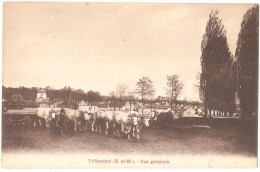 Dépt 77 - TRILBARDOU - Vue Générale (attelages De Boeufs) - Simi-bromure A. Breger Frères - (ferme - Environs D'Esbly) - Autres Communes