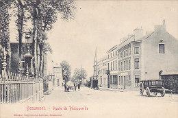 Beaumont - Route De Philippeville Animée, Attelage (chien) Edit Lebrun) - Beaumont