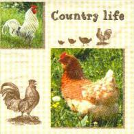 4 Diff. Serviettes En Papier / Paper Napkins / Ferme Farm Country Life Rooster Coq Hahn Gallo - Serviettes Papier à Motif