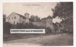 74 - MENTHONNEX SOUS CLERMONT - CHATEAU DE MIONNAZ - France