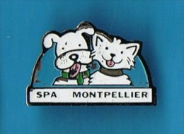 PIN�S //   . SPA MONTPELLIER