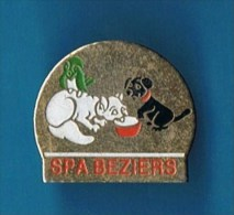 PIN�S //  . SPA BEZIERS