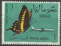 SOMALIA - 1961 Butterflies (Papilio Lormieri) 1s MNH **      SG 378   Sc C77 - Somalia (1960-...)
