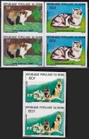 Benin, Animal Dog Cat Rabbit Pair Imperf (fa005) MNH - Benin – Dahomey (1960-...)