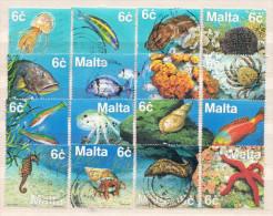 Malta Used Set - Vita Acquatica