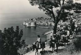 CPSM CROATIE Dubrovnik B - Croatie