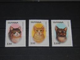 Guyana - 1997 Cats (I) MNH__(TH-3709) - Guyana (1966-...)
