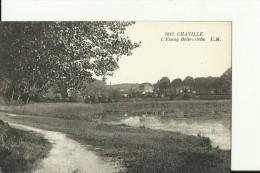 FR324  --   CHAVILLE   --  ETANG DE BRISE - MICHE - Chaville