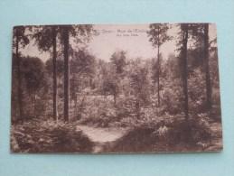 ORROIR Mont-de-l´Enclus Vue Sous Bois ( Ovaert ) Anno 19?? ( Zie Foto Voor Details ) !! - Mont-de-l'Enclus