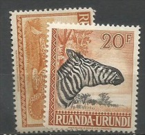 RU 138+145  **  6.5