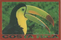 AK Costa Rica Tucan Toucan Tukan Central America Mittelamerika Centroamerica America Central Amerique Centrale - Costa Rica