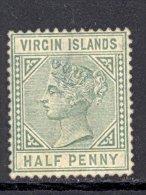 VIRGIN ISLANDS, 1883 ½d Unused No Gum, Very Small Thin - Britse Maagdeneilanden