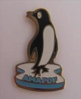 PIN�S AMAPOF  Amicale des Missions Australes et Polaires Fran�aises  PINGOUIN