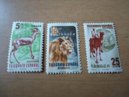 Spanien  Tanger 3 Werte Tiere - Spanisch-Marokko